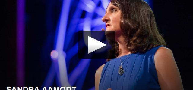 Una reflexión desde la neurociencia acerca de las dietas