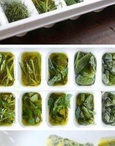Congelar especias, salsas, etc. luego listas para usar